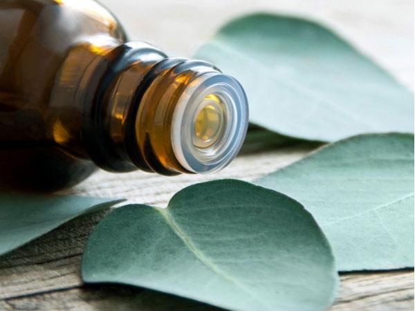 Cách tự làm tinh dầu sả chống muỗi an toàn cho ngày trời ẩm