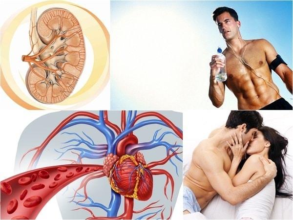 Top 10 loại thực phẩm tốt cho tinh trùng