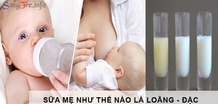 Sữa mẹ như thế nào là đặc - loãng? 1