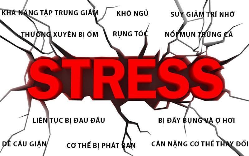 Dấu hiệu bị stress nghiêm trọng