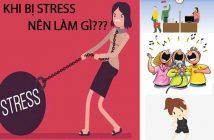 Khi bị stress nên làm gì để cân bằng cuộc sống?