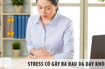 Chia sẻ: Stress có gây ra tình trạng đau dạ dày không?