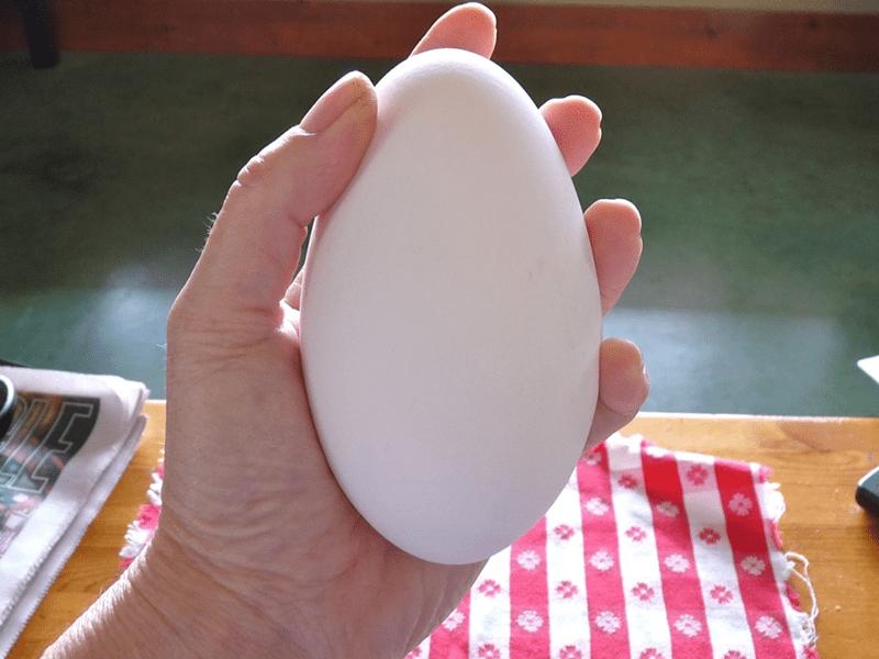 Trứng ngỗng có những tác dụng nhất định với mẹ bầu và thai nhi