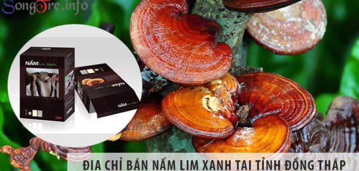 Địa chỉ bán nấm lim xanh uy tín tại tỉnh Đồng Tháp